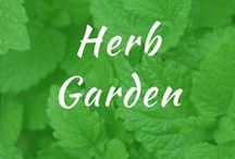 Herb Garden / Herb garden indoor or outdoor ideas. Herb garden on the deck. DIY projects for beginners, design and for medicinal herbs. Kitchen potted herbs. How to make raised layouts.