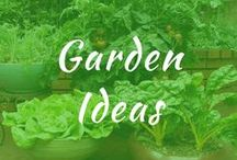 Garden Ideas / Garden ideas for DIY vegetables in your backyard. Rustic design. Grow flowers in raised beds for cheap in front. Gardens for small spaces. Fairy containers for outdoor patios.