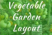 Vegetable Garden Layout / Vegetable garden layout and beginner ideas for gardening. Large, raised and best design for vegetable gardens. Small rows in backyard. Ideas for in ground planner. Round companion.