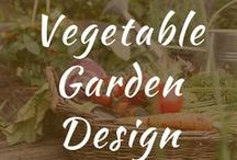 Vegetable Garden Design / Vegetable garden design and layout for fenced backyard. Seed starting ideas for beautiful raised landscaping. DIY for front yard for large and small projects. Vertical gardening.