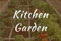 Kitchen Garden / Kitchen garden for indoor layout. Designs, décor, and window ideas. Indoor garden for small apartment. French, English, Victorian style. Outdoor garden fence.