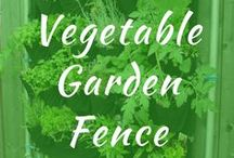 Vegetable Garden Fence / Vegetable garden fence DIY ideas for cheap. How to use cold frame and a backyard gate easy. Keep deer and rabbits out using chicken wire. Small, raised.