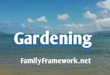 Gardening / Learning to grow your own vegetables.
