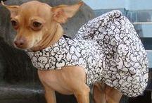 Dresses / by fanny morton