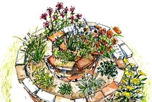 Herb Garden Ideas / by Nancy Spadolini Hawkins
