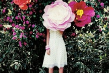 Hello, Dahlia / floral me on pinterest. #FlowerShop / by Caroline Bontia