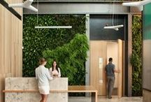 Office plants / Plants are massively beneficial for the office. Not only do they boost productivity, but also clean the air from office toxins!  http://www.posturepeople.co.uk/bringing-space-life-plants-office/