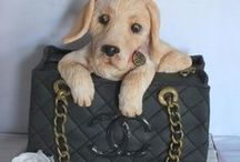 Pets in the Bag
