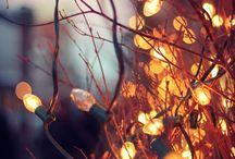 Cozy Autumn / Pumpkins, pies, lights & leaves ✨