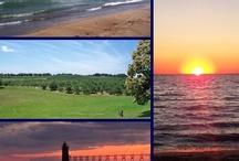 Pure Michigan Colors