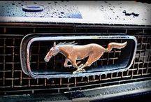 Mustang stuff