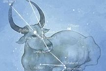 Taurus / Board about the astrology sun sign and constellation of Taurus. Pins include zodiac/astrological artwork, gifts and infographics. Taurus, the Bull, is a fixed earth sign, ruled by Venus.