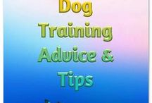 Dog Training Advice and Tips / dog help, dog articles, dog training tips, dog training advice, puppy training.