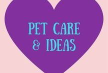 Pet Care + Ideas / Tips + ideas for taking care of and spoiling your pets! Easy DIY ideas for pets!