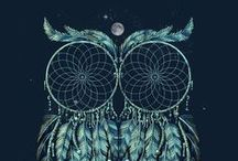 Owls! / by Daisy Hicks Woods