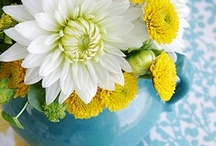 Such Pretty Flowers! / by Bev S