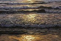 Alfredo Navarro / Oil Paintings On Board