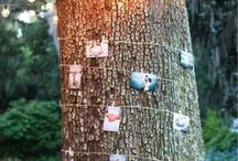 Tree Decor Ideas For a Rustic Wedding / Our woodland glade & trees are just waiting to be wrapped in polaroids and treasured memories - here are our favourite tree decor ideas for a rustic wedding. -- http://www.gellifawr.co.uk