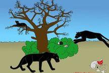 Fotogalerie verschiedene Tiere, Website Vitus-Welt.eu / Naufnahmen verschiedener Tiere