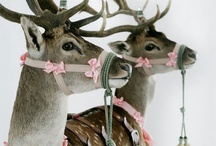 Christmas / by Anna Schneider