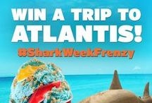 Celebrate Shark Week / by Cold Stone Creamery