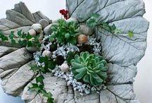 Растения и бетон