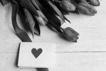 ne cessez jamais l'amour romantique