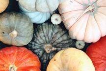 fall y'all. / autumn joys / by Anna Holt