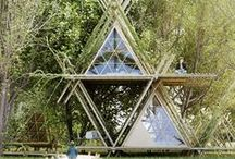 green living spaces / by Jessica Pezalla | Bramble Workshop