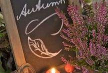 AuTuMn ~Fall Ideas To Enjoy ~ / by Lulabelle