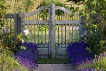 Garden and Outdoor Living / Garden ideas and outdoor living areas. House exterior ideas.