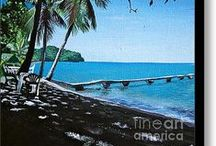 Dominica / by Kelly Nelson