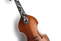 Viola d`Amore / Musical instruments