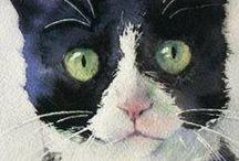 ID :: Cat - Chat