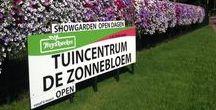 Tuincentrum Overzicht / Zoekt u een tuincentrum in de buurt? Op TuincentrumOverzicht.nl bieden wij een overzicht van alle tuincentra, met daarbij openingstijden, koopzondagen, aanbiedingen en folders.
