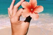 Summer!☀️