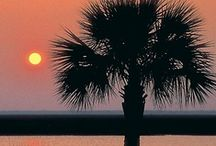 South Carolina / by Kaliska S.