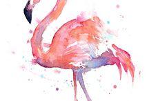 Flamingo ooo