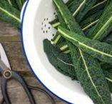 ZELF KWEKEN | groente / Hier lees je alles over zaaien, oogsten en smaak. Met handige moestuin-tips en uitleg!