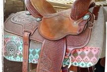 Horse Tack and Clothes