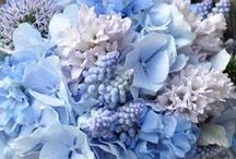 Bouquets & Boutonnieres / All kinds of personal flowers for all four seasons to inspire florists and floral designers.