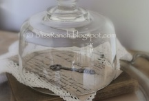 Under Glass (Cloches and Jars) / by Beth Tantanella-Gamache