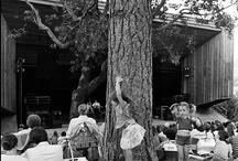 Britt's History 1963-today / #BrittFestivals #Brittfest #Britt / by Britt Festivals
