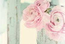 Lovely / by Gii Gi