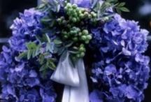 Wreaths & Door Decor for all seasons