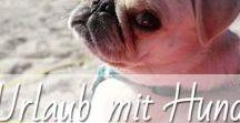 Urlaub mit Hund / Urlaub mit Hund ist unmöglich? Ganz im Gegenteil. Zu den beliebtesten Reisezielen mit Hund gehören Deutschland, Ostsee, Nordsee, Dänemark oder Italien, aber auch viele andere Reiseziele machen Hund und Mensch Spaß. Tolle Reiseziele und Tipps für eine gelungene Reise mit Hund stelle ich euch immer mal wieder auf meinem Blog rotknalltindasblau.de vor. Es gibt doch nichts schöneres als reisen mit Hund.