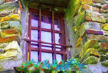 Stunning windows