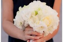 Bouquet / Wedding Bouquets by Visi Vici - Produtores de Sonhos