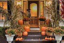 Halloween/Fall / by Sherry Daugherty