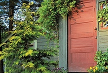 Home: entrances / by Denis Orsinger
